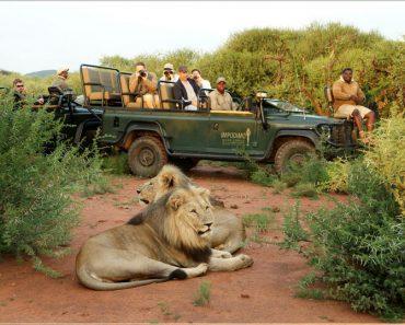 réserve Madikwe